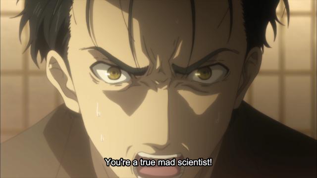 Steins Gate true mad scientist okabe